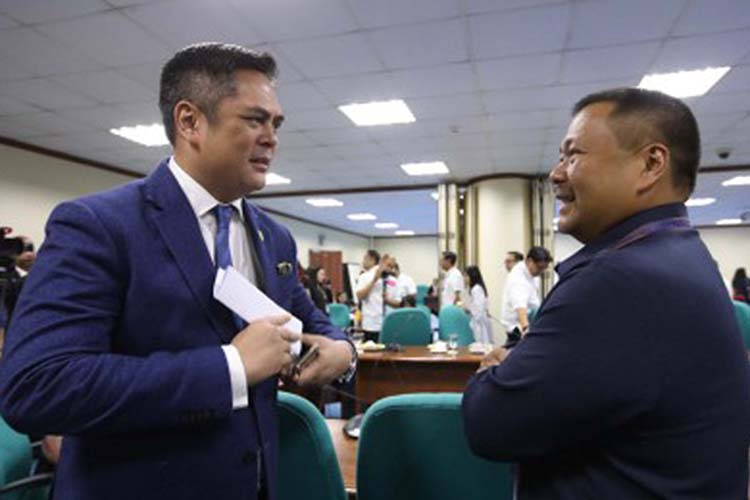 Ejercito commends PCOO for 'revitalized' PNA