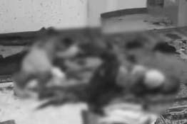 2 killed, 3 hurt in Zambo mosque grenade explosion
