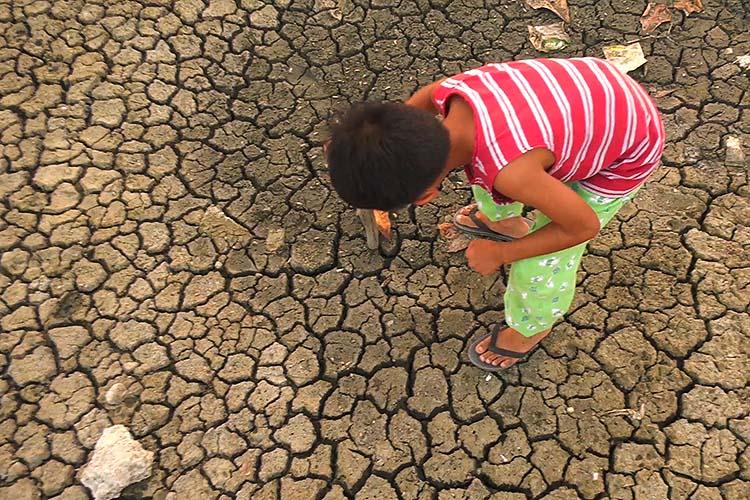 Pangasinan, La Union farmlands affected by El Niño