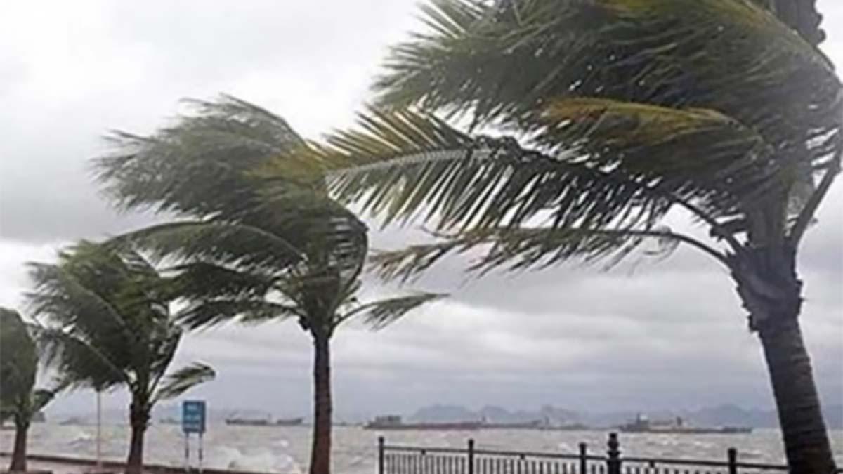 Storm blows across Japan, Korean peninsula, killing 9