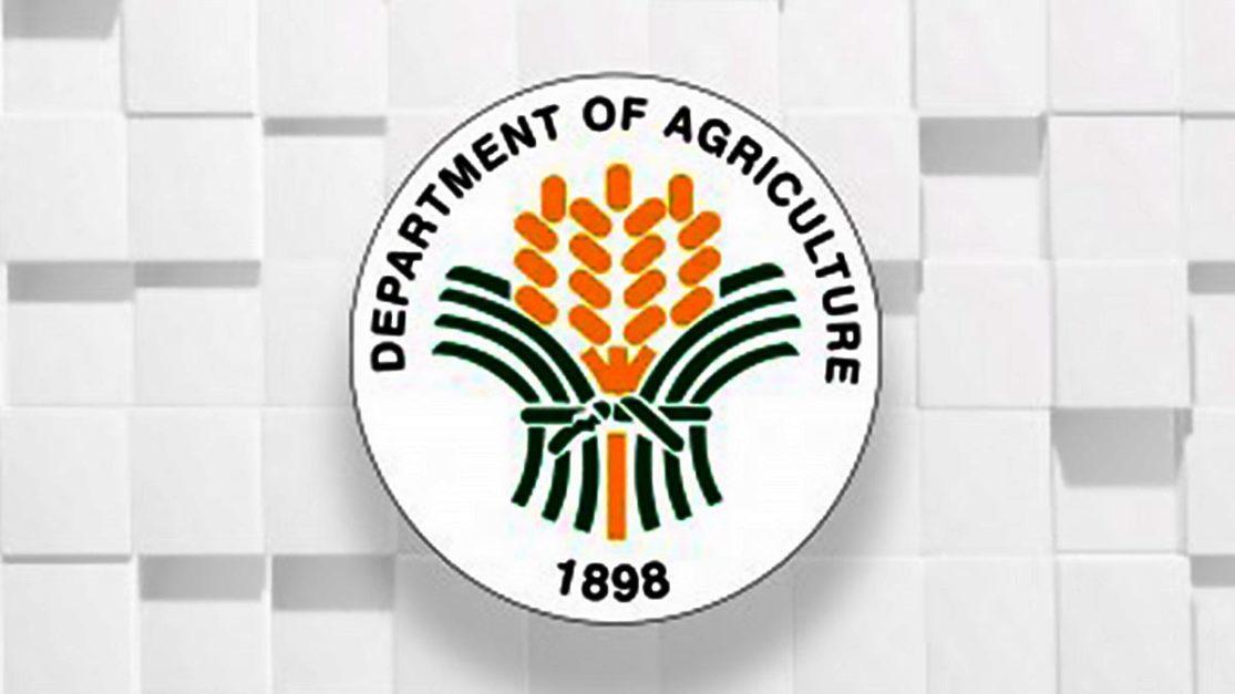 DA dispels ASF scare in Cagayan Valley
